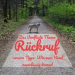 Das verflixte Thema Rückruf – unsere Tipps- wie euer Hund zuverlässig kommt