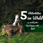 5 Aktivitäten im Wald – so macht jeder Spaziergang mehr Spaß