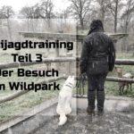 Antijagdtraining Teil 3 – Der Besuch im Wildpark